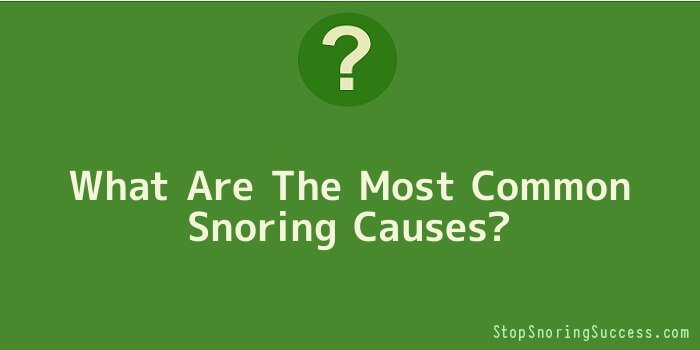 What Are The Most Common Snoring Causes